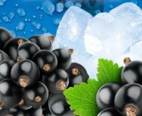 Čierne ríbezle - sirup na výrobu malinovky